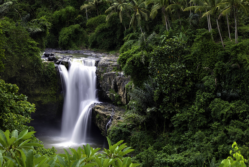 Widokówka Bali