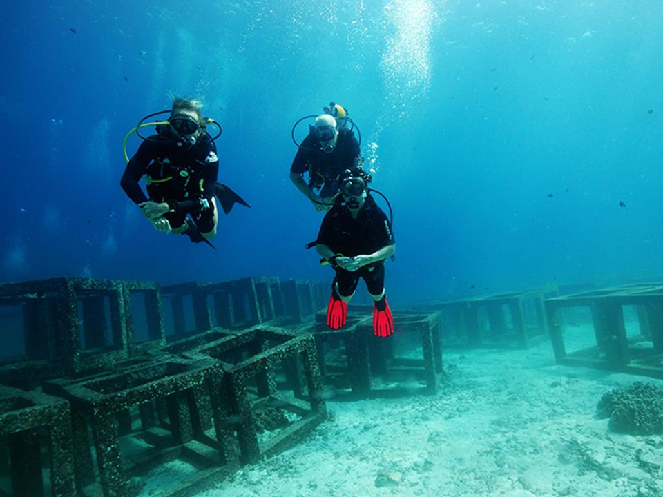 Advanced Diver - AOWD