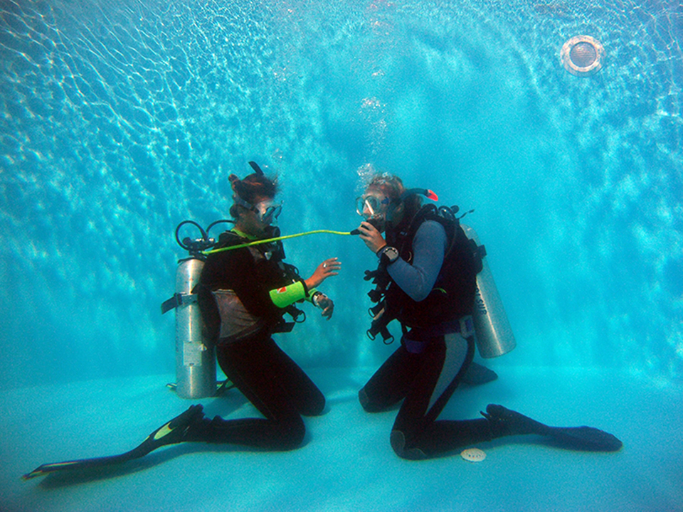 Open Water Diver - OWD